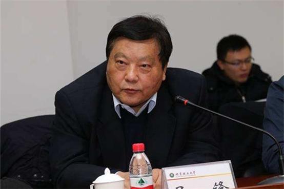 吴锋院士:锂硫电池能量密度已经突破500Wh/kg