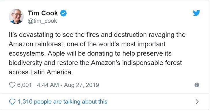 苹果捐款修复雨林 苹果捐款计划库克尚未公开