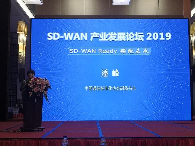 中国通信标准化协会副秘书长潘峰:SD-WAN要加快标准