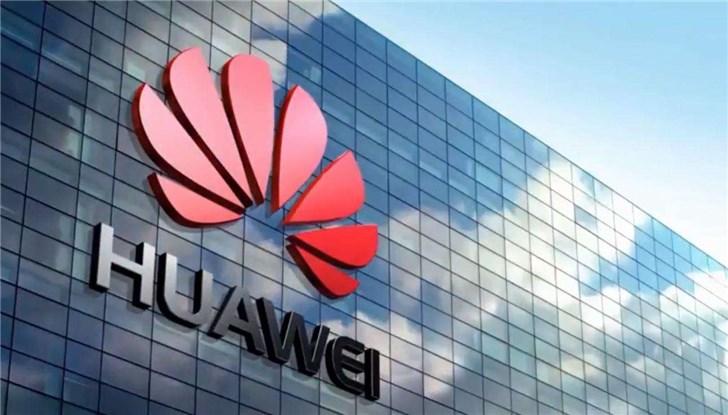 华春莹:确保网络安全,要防的不是华为是思科苹果