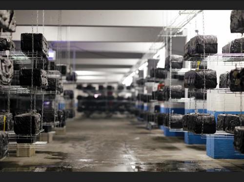 地下停车场变农场,法国公司用LED灯具种蘑菇等蔬菜