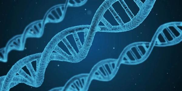 艾滋抗體新方法!合成DNA:克服耐藥性