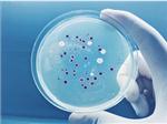 2019年终盘点微生物药领域