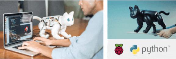 宠物圈超火爆的AI机器人MarsCat火星猫