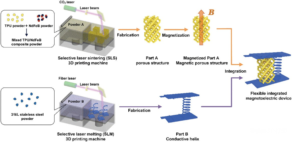 华科大:4D打印材料组合,实现可控的压电转换