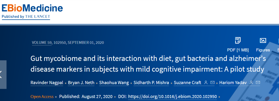 生酮饮食可以通过改变肠道真菌来降低患阿尔茨海默病的风险