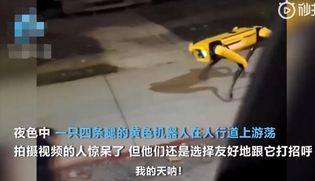 机器狗夜晚独自在街头游荡,引起人群恐惧