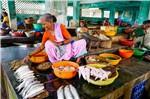 新冠病毒怕天熱?印度南部隔離數千人