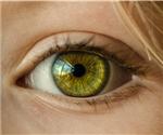 香港科技大學制成世界首個3D人工眼球?