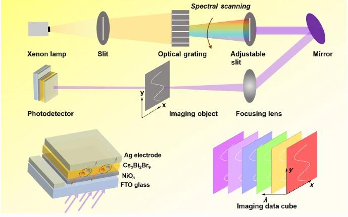 性能优异!暨大团队成功打造铋基钙钛矿光电探测器,首次应用于紫外多光谱成像
