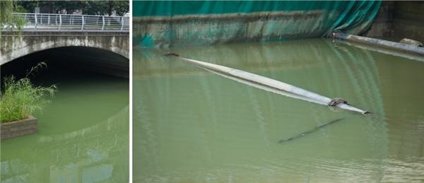 蔚绿产品湖卫氧成功治理无锡段一处蓝藻水华