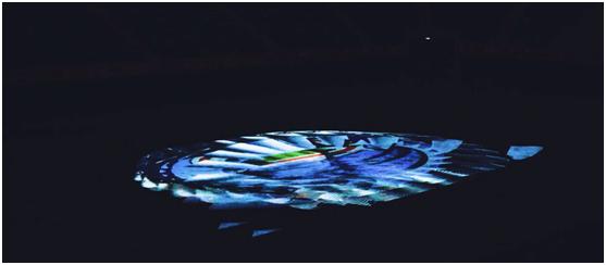 盛世之花如约绽放!十四运盛大开幕,NEC激光投影打造沉浸式体育盛宴
