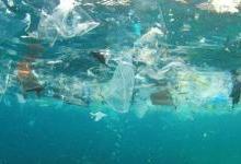 """环境""""隐形杀手""""微塑料正危害地球"""
