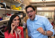 科学家发明柔性传感器 可用于诊断胃肠道疾病