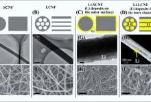 藕状结构实现高锂载量无枝晶锂负极技术