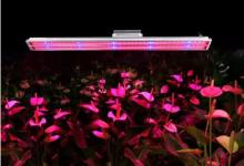 【科普】植物生长灯UL认证介绍及结构要求