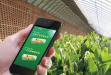 Ruff物联网技术如何实现智慧农业的应用
