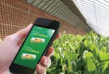 Ruff物联网技术怎样实现智慧农业的应用?