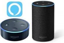 Echo系列推动Alexa应用攀升热门榜首