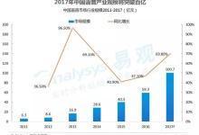 2017年中国人工智能行业分析