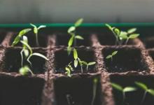 土壤治理千亿大市场分析