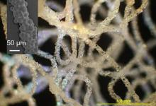 科学家研发出用于生物医学的3D打印硅胶技术