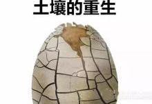 """土壤治理""""红包雨""""再掀环保投资狂潮"""