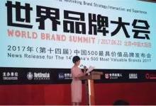 中国500最具价值品牌:雷士连续六年蝉联榜首