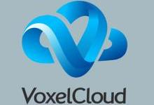 VoxelCloud着力构建医疗影像人工智能图谱