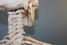 【观察】骨科植入物与增材制造的进展
