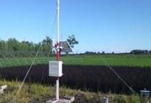 自动气象监测仪助力现代化农业发展
