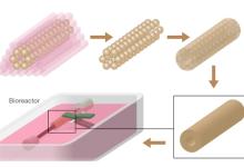 解析生物3D打印的进击之路