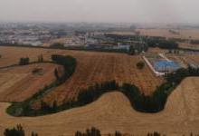 镉污染小麦从何来又流向何方?