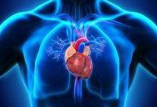 肺动脉高压II期临床试验成功:Arena股价大涨50%