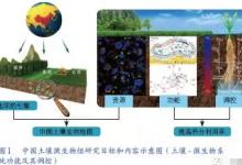 土壤微生物组在环境治理研究现状与展望