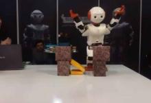伊朗研制机器人:会跳舞会空手道 售价8000美元