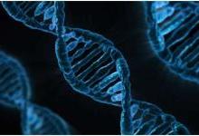 利用CRISPR治疗危及生命的血液疾病