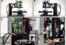 3D生物打印功能性的血管化老鼠甲状腺