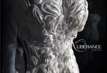 全球首款3D打印TPU婚纱惊艳亮相