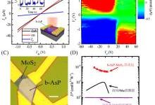 新型二维材料黑砷磷室温高灵敏中波红外光电探测器