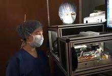 可用于癌症术前分析的质谱成像方法