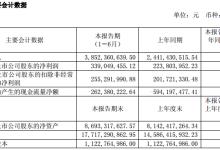 杉杉股份上半年净利增长51.49%