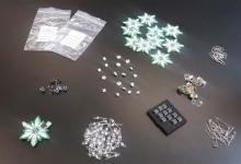 荷兰设计师3D打印可穿戴雪绒花项链