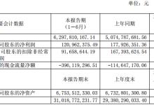 力帆股份:上半年净利润同比下降32.02