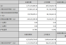 中来股份:上半年实现归母净利润1.54亿元
