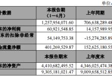 宝泰隆上半年净利润6,092.15万元