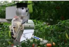 我国农用机器人研发走向一个新阶段