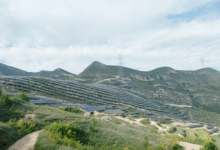 晶科电力芮城50MW领跑者项目并网