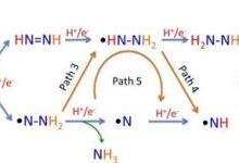 半导体光催化固氮合成氨降低环境污染危害