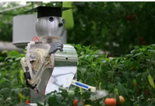 解读我国农用机器人未来发展趋势